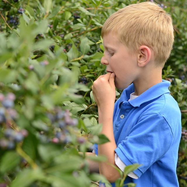 Inciter votre enfant à manger les légumes
