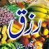 Rizq Ka Sahih Istemaal By Shaykh Mufti Taqi Usmani