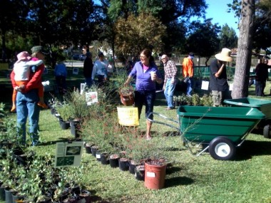 Horticulture And Gardening At Ucla Extension California