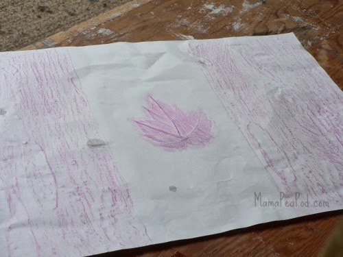 maple tree rubbing canada flag craft for kids