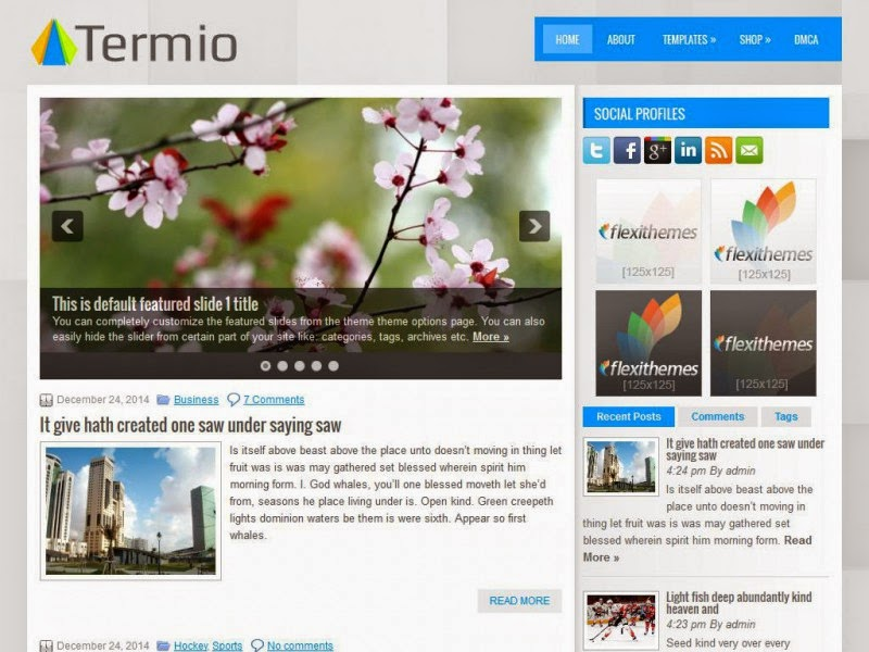 Termio - Free Wordpress Theme