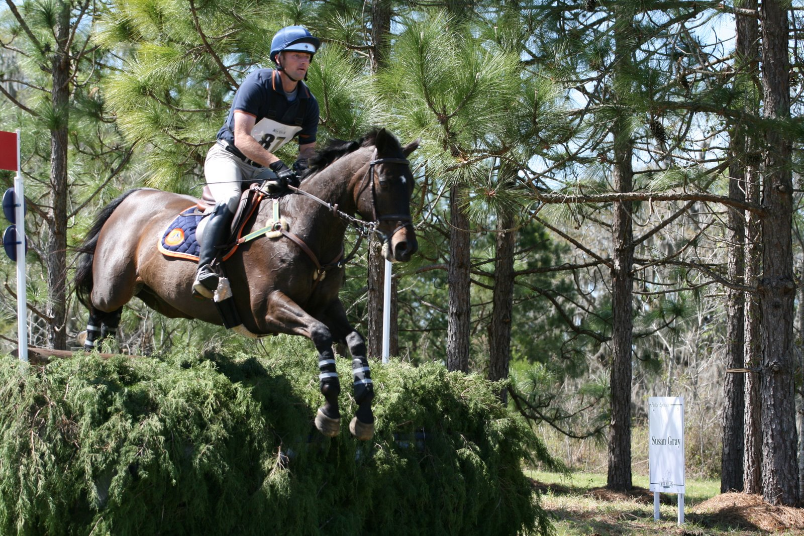 Horses jumping cross country - photo#22