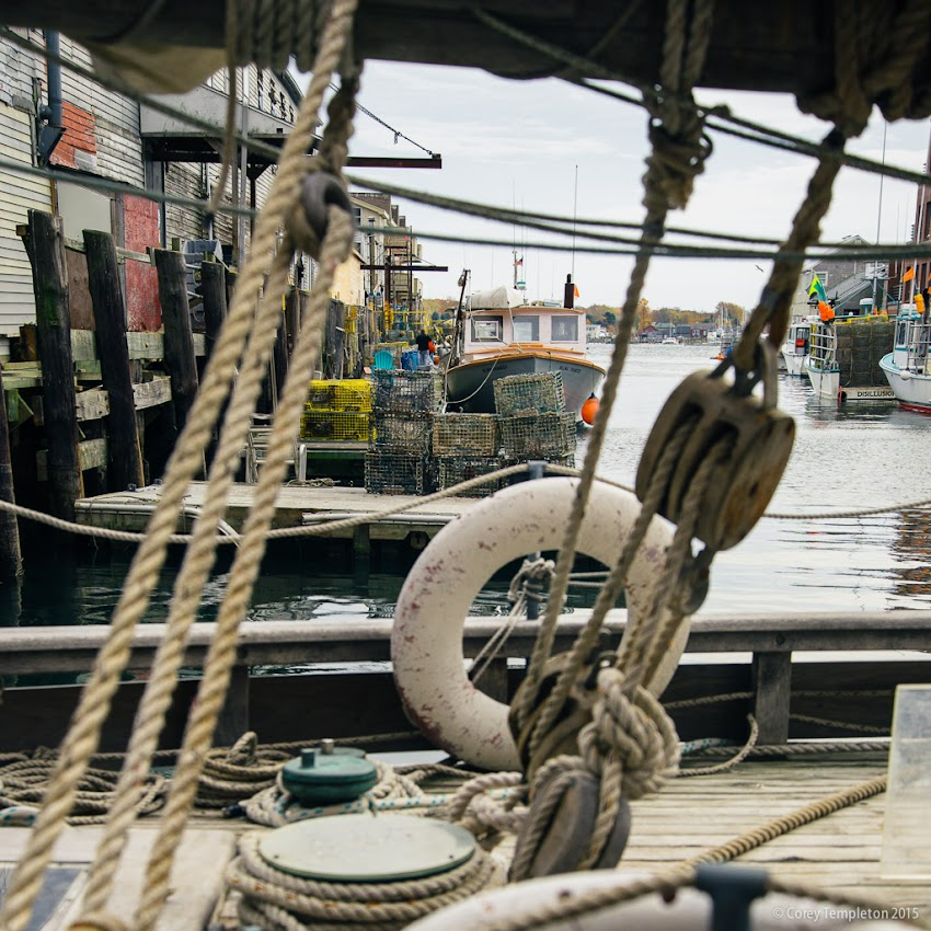 Portland, Maine November 2015 photo by Corey Templeton. Custom House Wharf and Casco Bay - looking through the rigging near the stern of the boat.