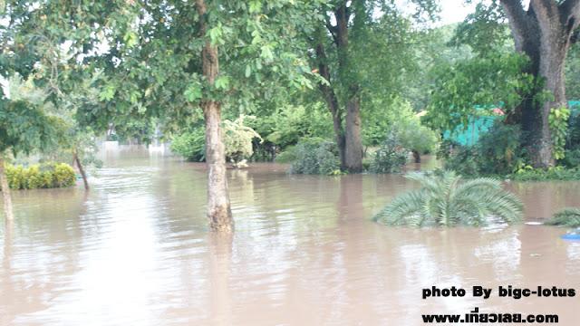 น้ำเลย แม่น้ำเลย น้ำท่วมเลย 54