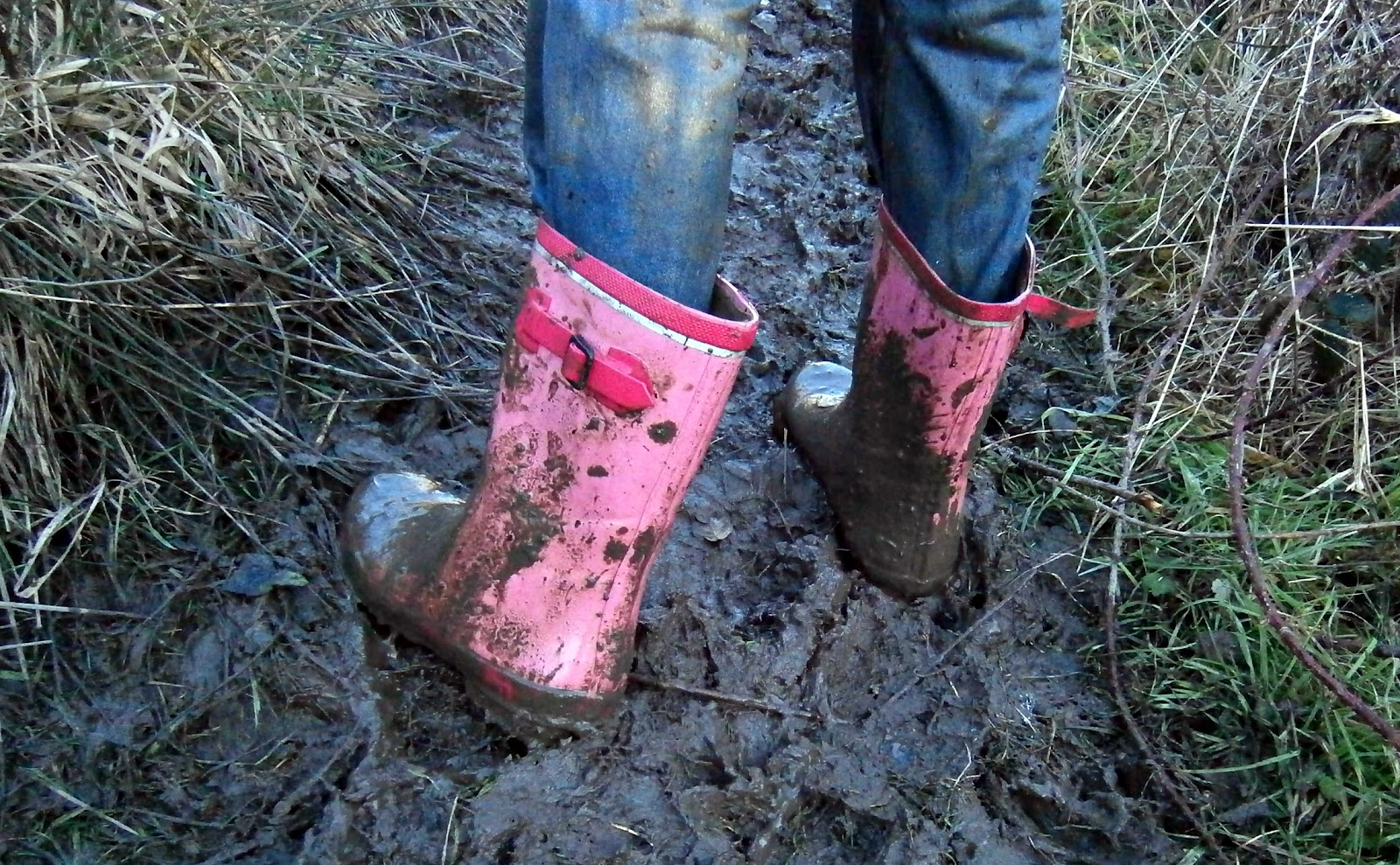 how to clean really muddy running shoes