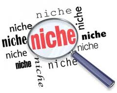 niche site money