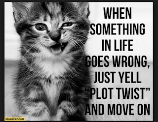Plot Twist....Life's changes