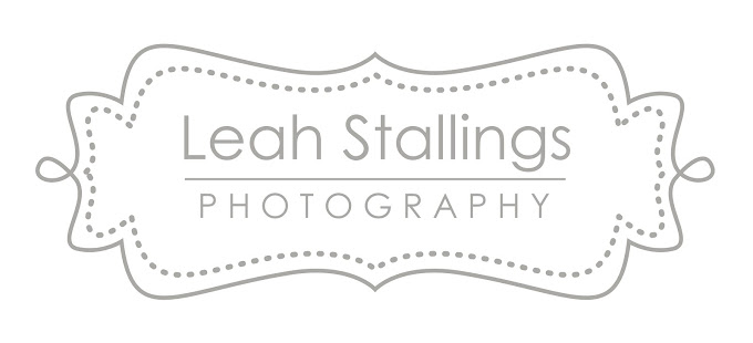 Leah Stallings Artistic Portraiture