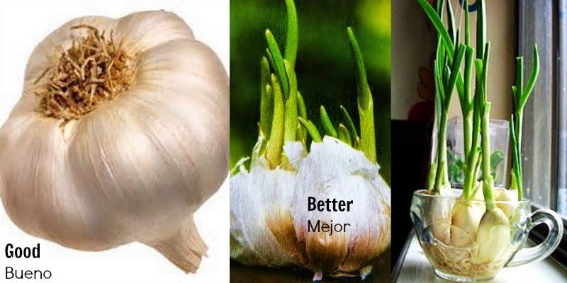 que hace aumentar el acido urico alimentacion sana acido urico dieta para la gota y diabetes