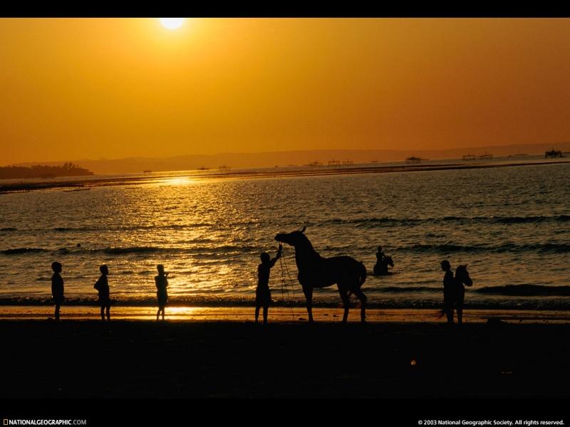 wallpaper beach sunset. Beach Sunset HQ Wallpaper