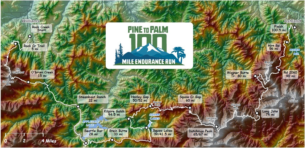 Pine to Palm 100