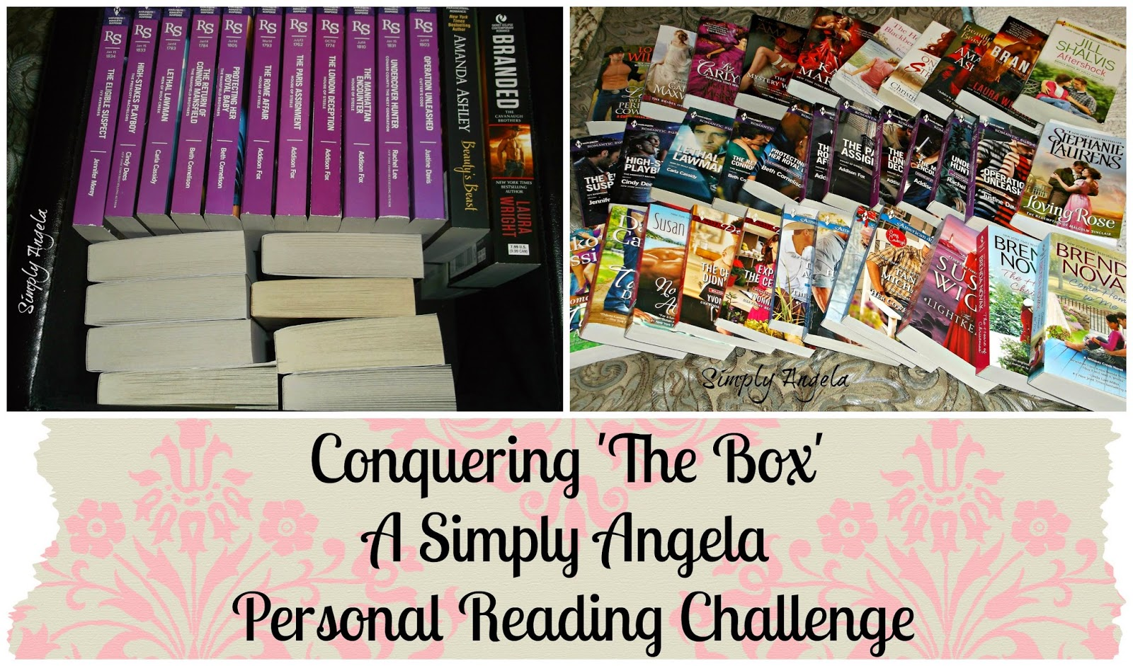 http://simplyangelarenee.blogspot.com/2015/01/personal-reading-challenge-conquering.html