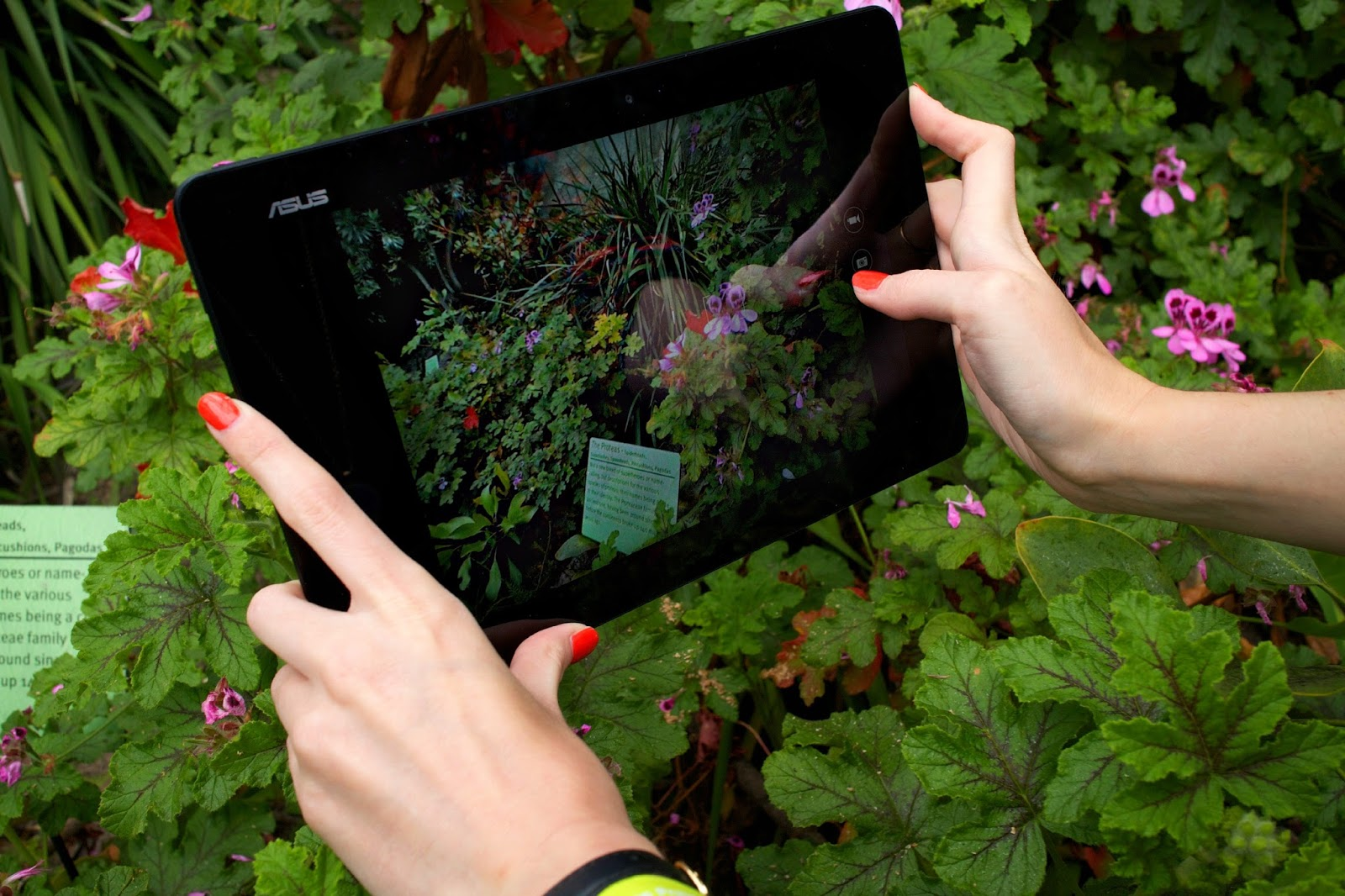 asus t100 chi blogger review photography