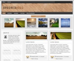 Brushed Wood WordPress Theme