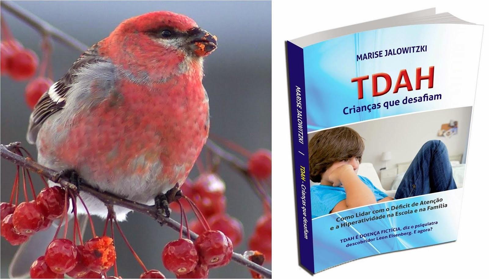 Livro TDAH Crianças que Desafiam Valor Promocional até 20.dezembro.2014 R$ 28,00