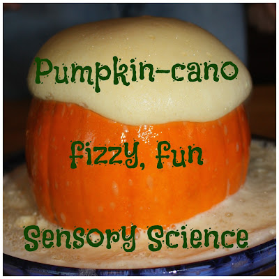 10 fall science ideas for kids
