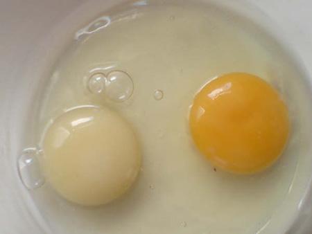 10 Fakta Dan Khasiat Telur Ayam Asli Pengembara Info