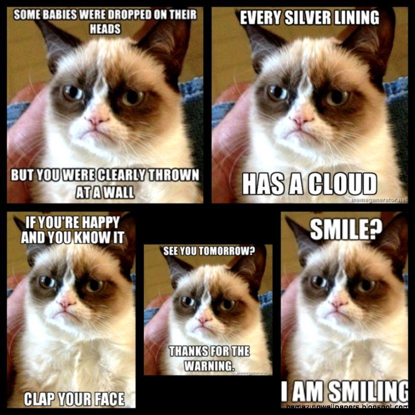 Grumpy Cat Quotes Tumblr Kolarkoler Com   PowerballForLife