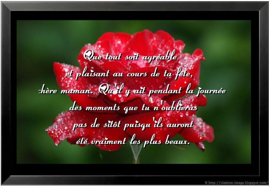 Citation on pinterest citations humour bonheur and eid - Citation fete des meres ...