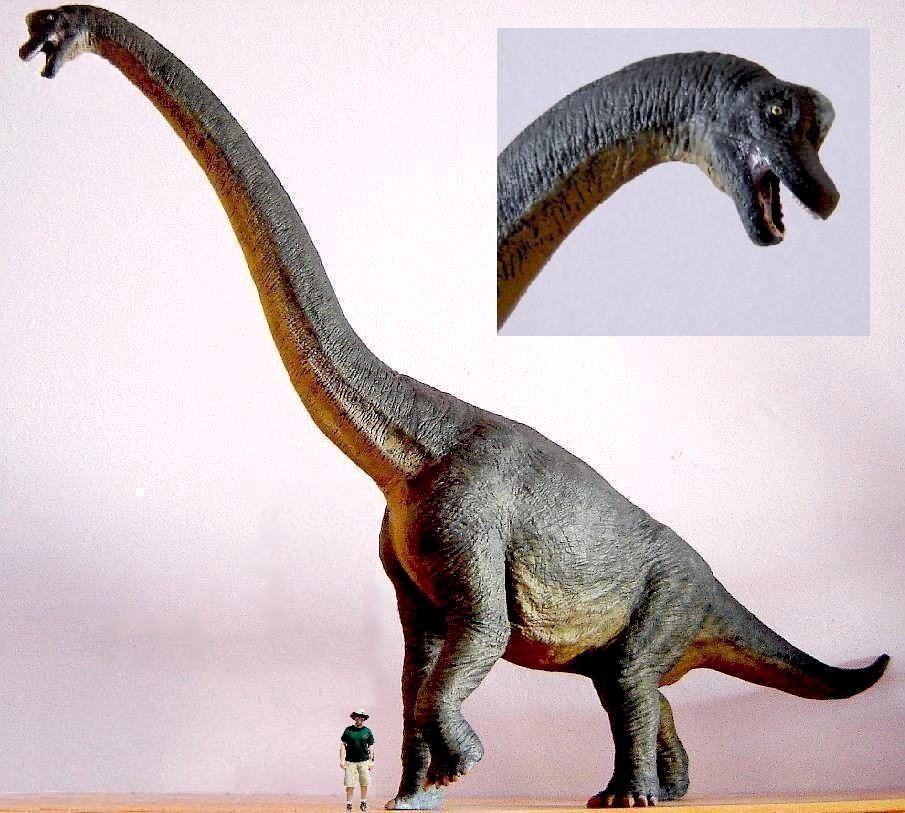Sauroposeidon Vs T Rex...