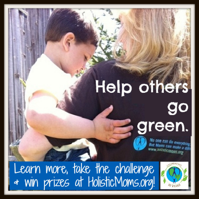 Holistic Moms Network: Don't Just Be the Change You Wish to See, Create the Change!