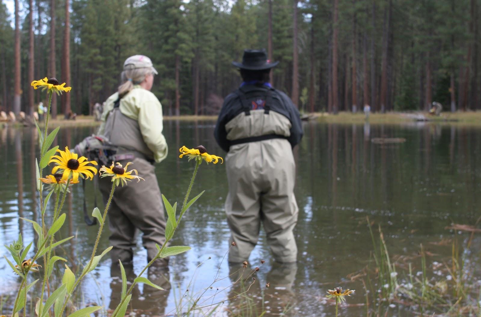 Lake creek lodge for Fishing sponsorship application