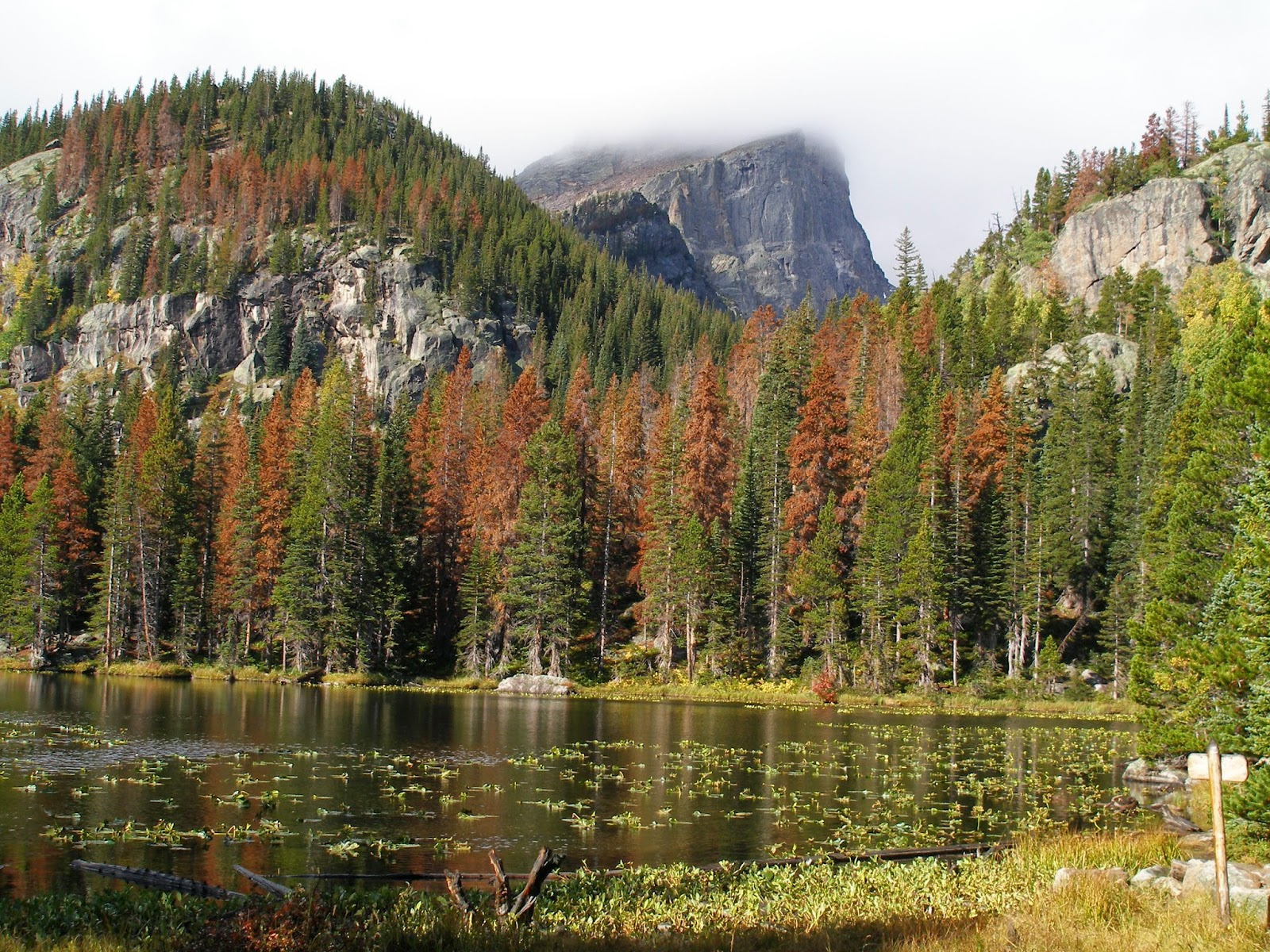 Go hike colorado bear lake to emerald lake rocky mountain you wont be alone here but youll get a true rocky mountain national park experience with just a minimum amount of effort sciox Image collections