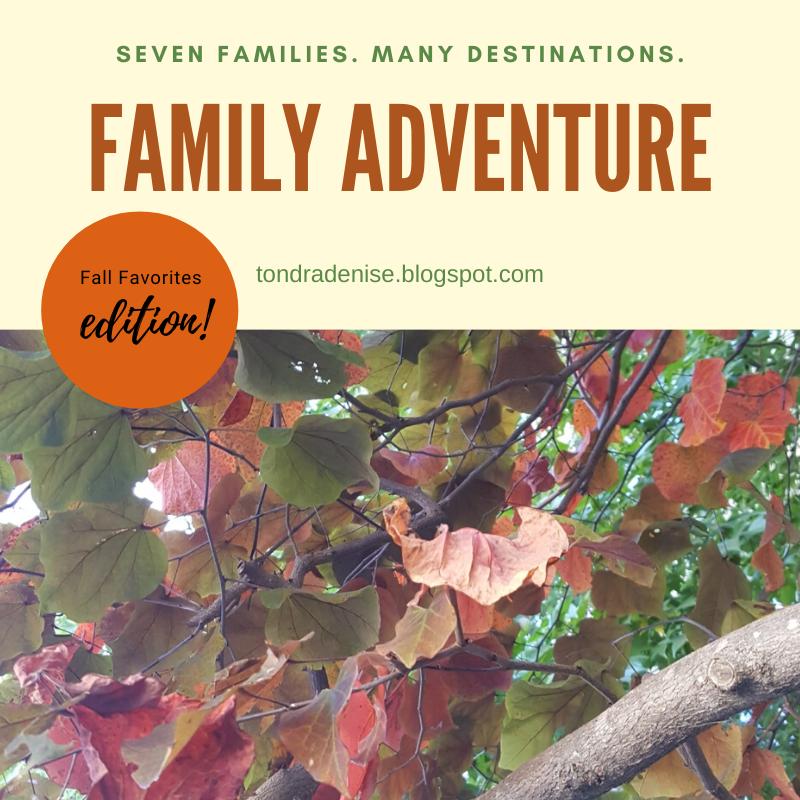 Fall Adventure...