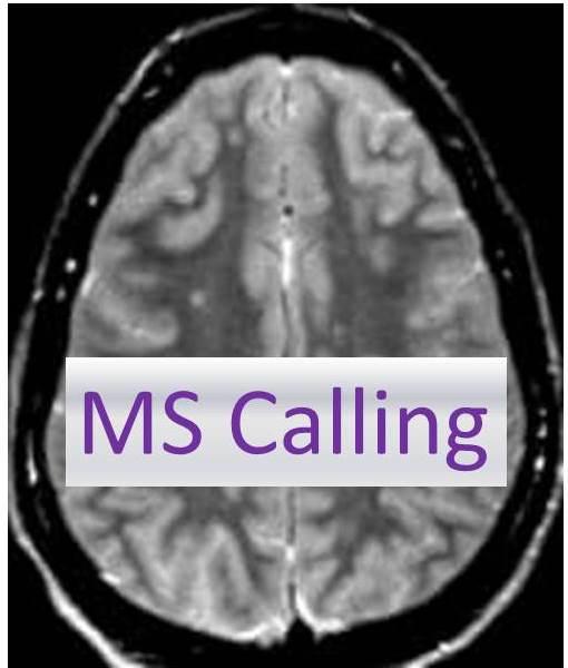 MS Calling Logo