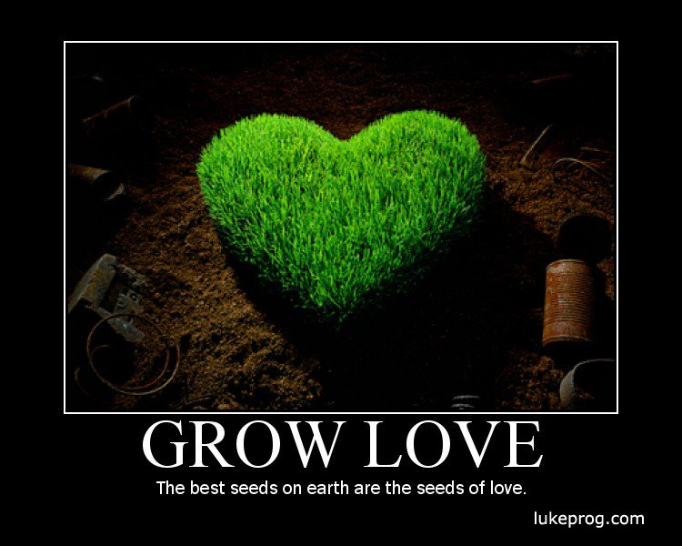 Quotes About Love Growing : PicturesPool: Inspirational quote famous quotes