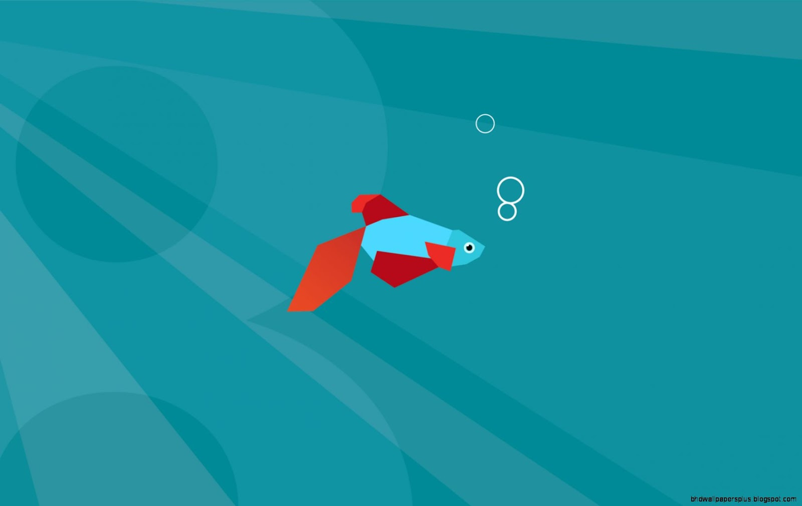 Windows 8 Fish Desktop