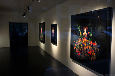 natalia edenmont, galleri, utställning, kulturnatta, 2012, göteborg, tsyfpl, foto anders n