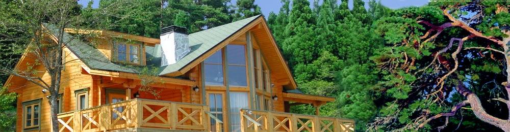 Достоинства финских деревянных домов из клееного бруса