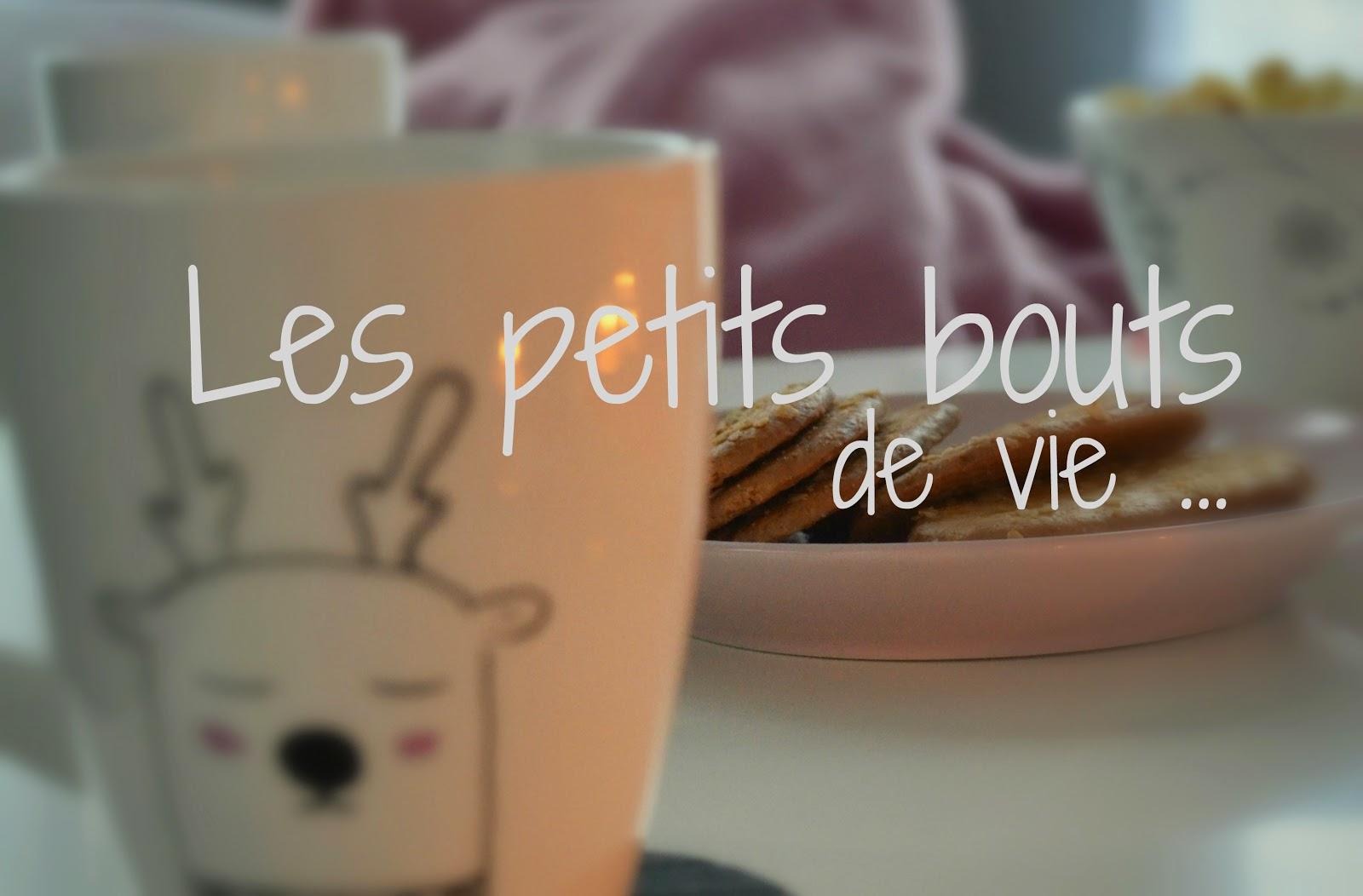 http://les-petits-doigts-colores.blogspot.be/p/des-bouts-de-vie.html