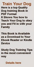 Dog Training Ebook Download