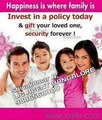 LIC family insurance