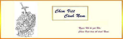 Chim Viet Canh Nam
