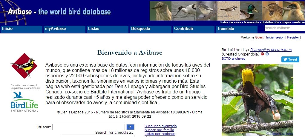 Avibase The World Birds Database
