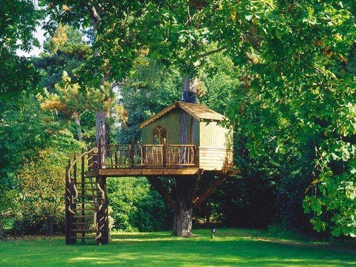 Tree houses for adults 40 pics - Casas para arboles ...