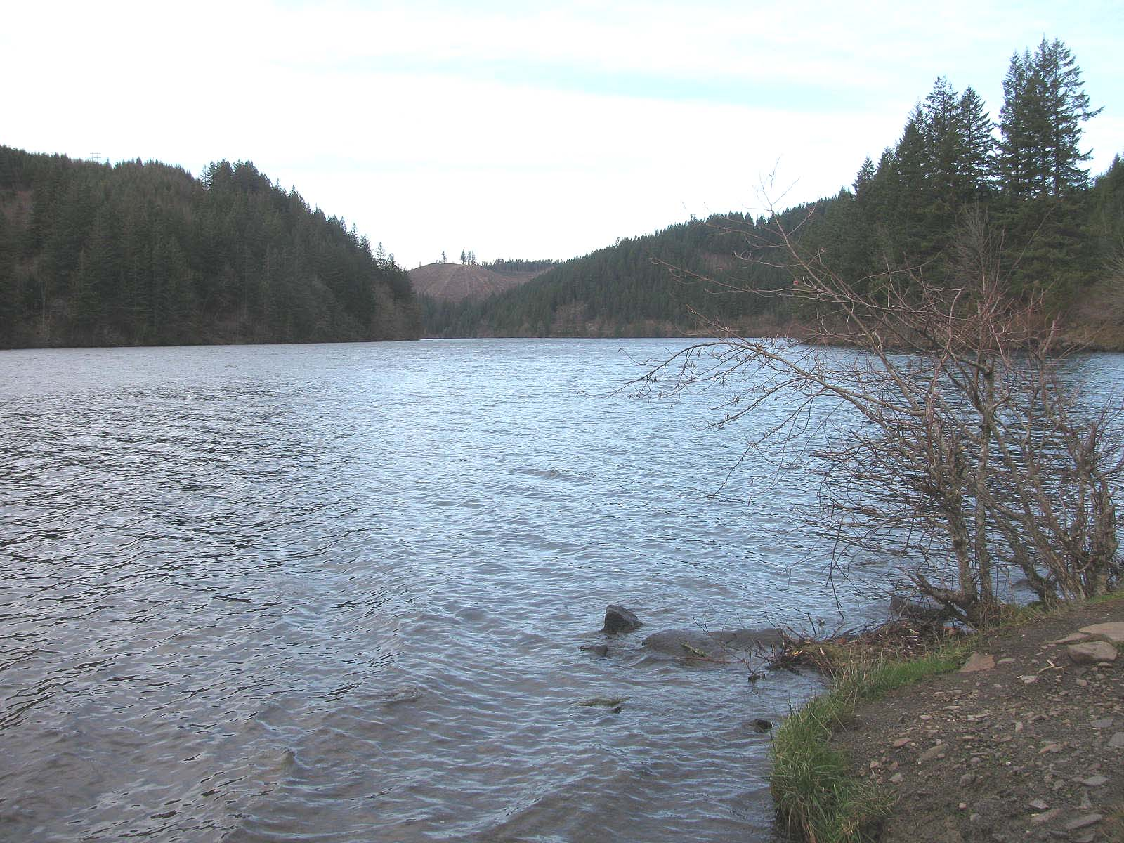 large lake created by a dam on the Clackmas River  near Estacada, Oregon.  Shows pine trees surrounding the lake.