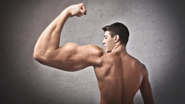 [Obrazek: Bicepsy.jpg]