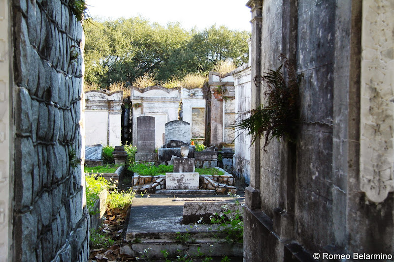 Lafayette Cemetery No. 1 Garden District Walking Tour New Orleans