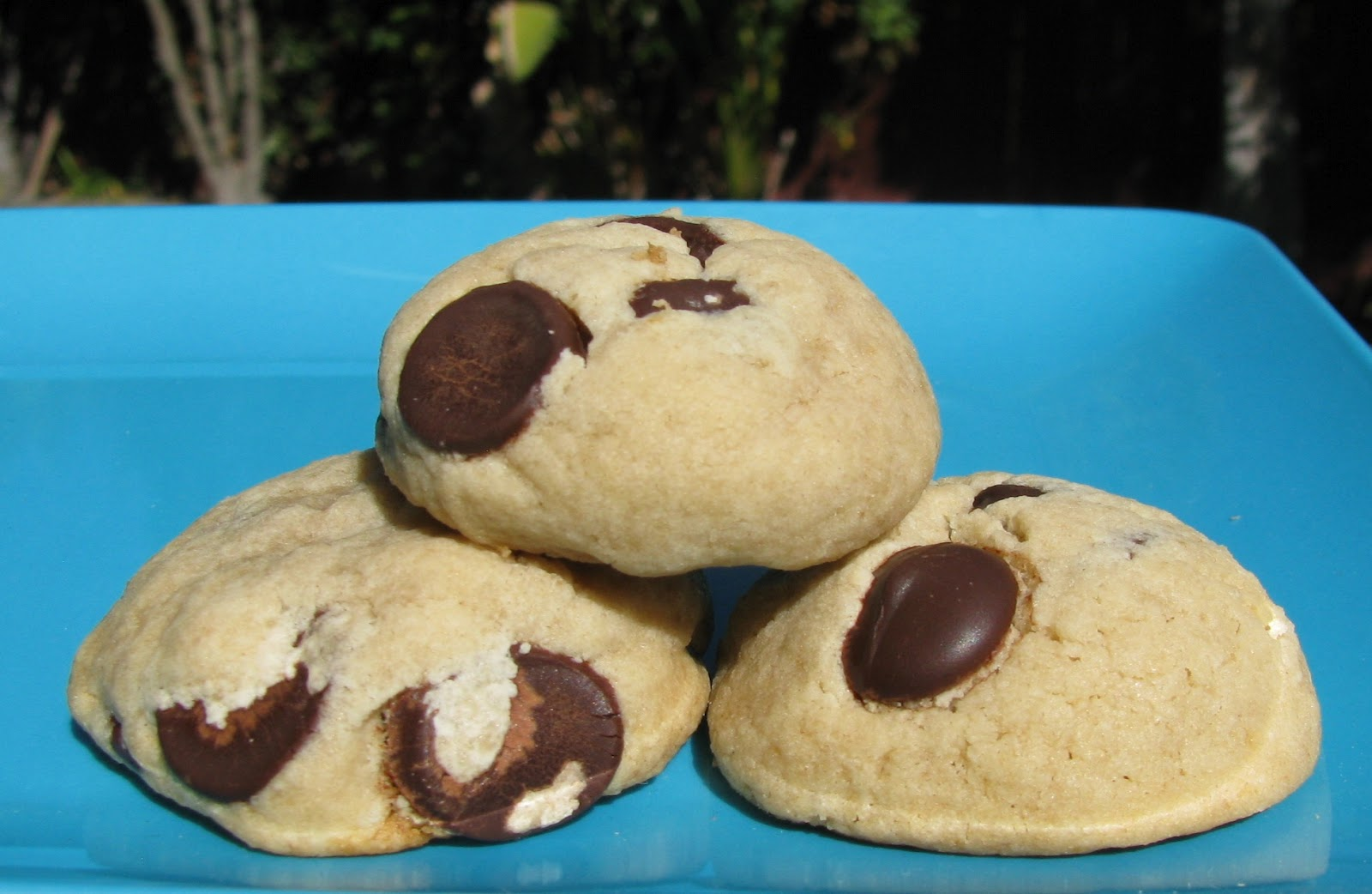 Squishy Chocolate Chip Cookies : Corrie Food: Soft Chocolate Chip Cookies