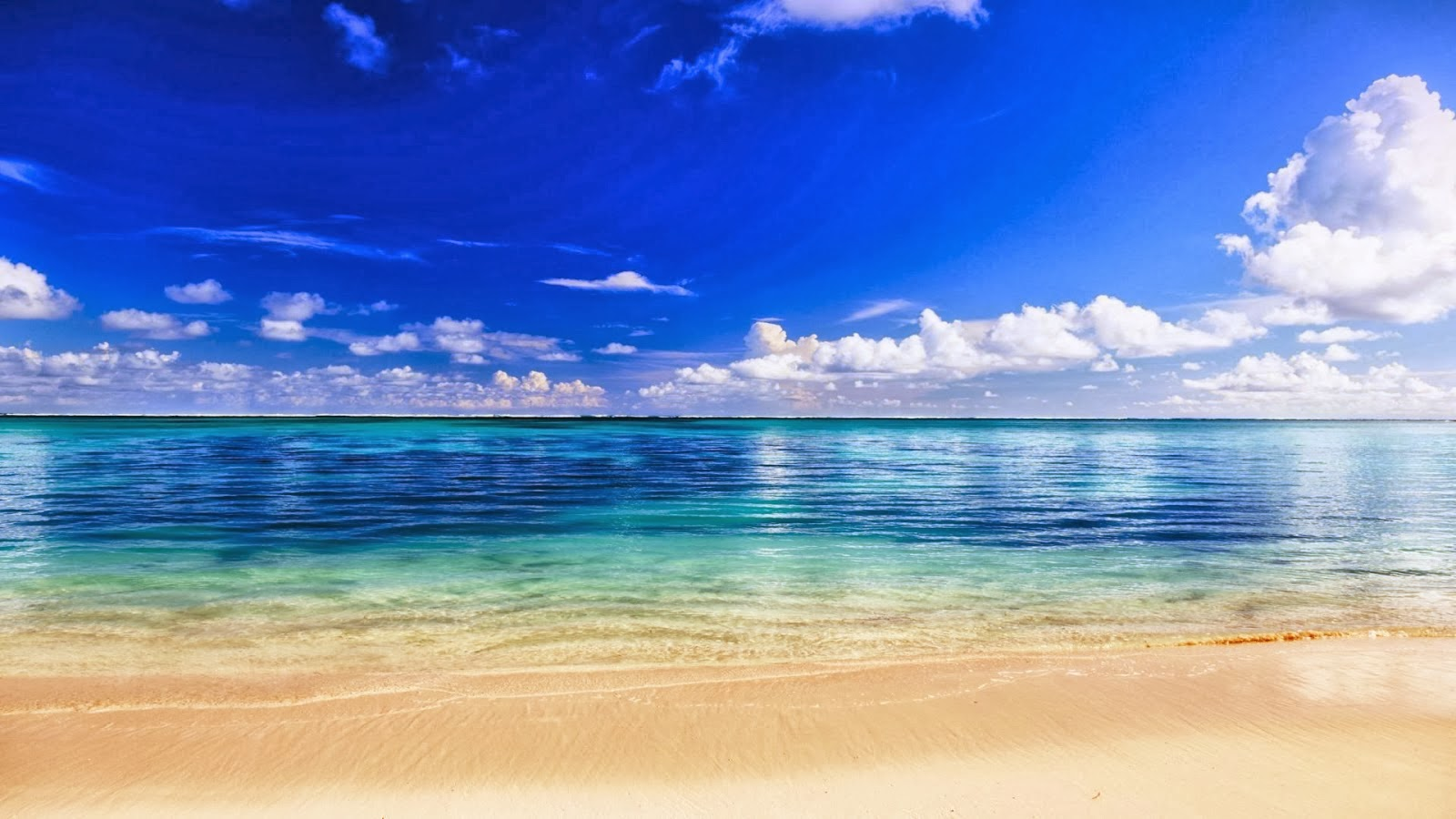 All Hot Informations: Download Blue Water White Sand Beach