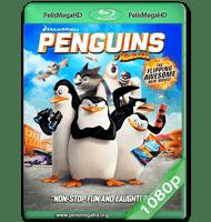 LOS PINGÜINOS DE MADAGASCAR (2014) WEB-DL 1080P HD MKV ESPAÑOL LATINO