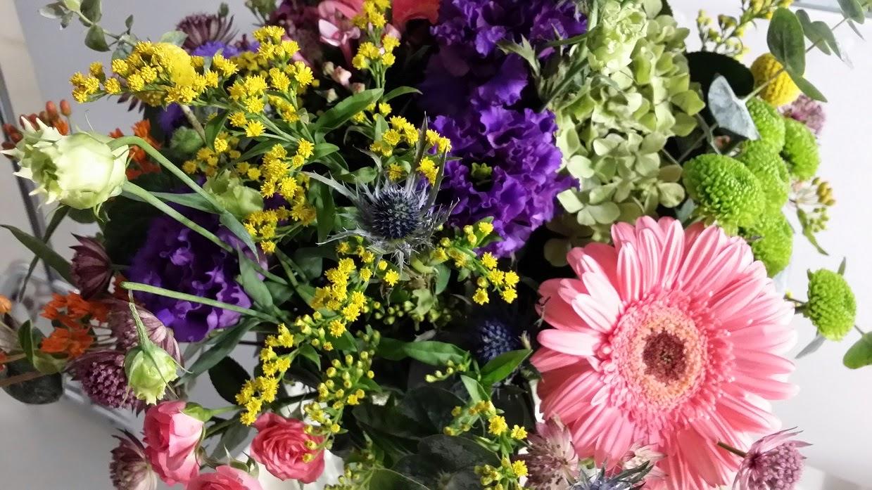 Flores, Colors