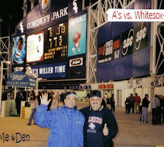 Comiskey Park- Chicago, Illinois (2002)