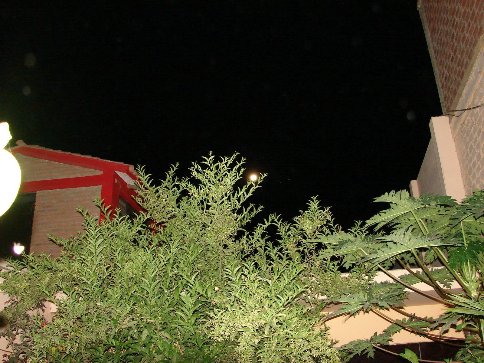 ATENCION-18-marzo-19-20-21-22-23...2011 ultimos avistamientos Ovni PUERTA d laborat, 7:09:57pm hoy.