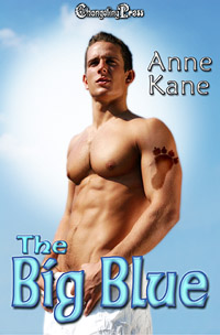 The Big Blue by Anne Kane