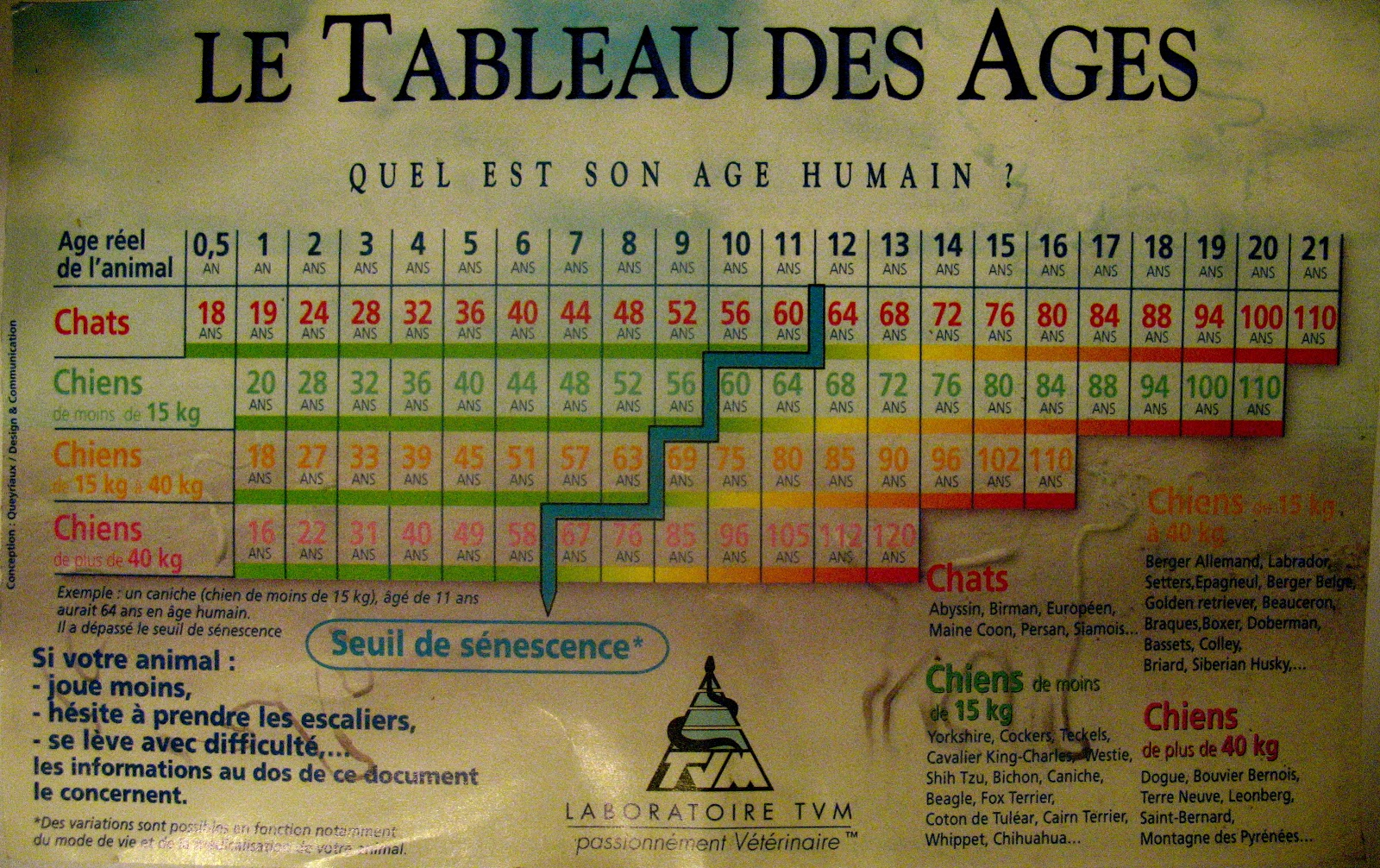 Age Reel Chien garde animal: tableau des âges chiens / chats